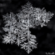 feb19-snowflake3-full