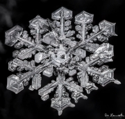 1d4-snowflake25