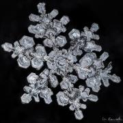 1d4-snowflake27