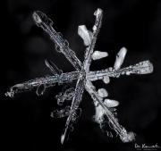 mar4-snowflake7